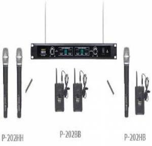 Micro không dây cầm tay Vicboss P-202H : 2CH